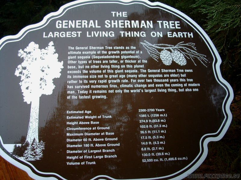 General Sherman fact sign.