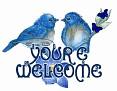 YOUREWELCOME BlueBirds