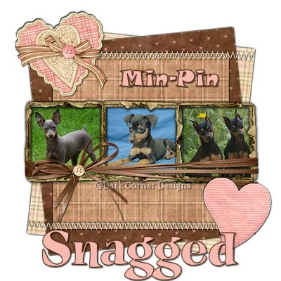 dcd-Snagged-Min-Pin
