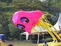 Jellyfish kite.