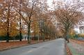 Eindhoven Autumn (36)