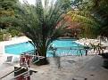 Vue de la piscine de l' Hôtel Caribe