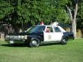 1990 Ford CV- Tiberon PD