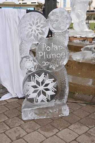 Polar Plunge 2016 017