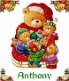 Santa bearAnthony