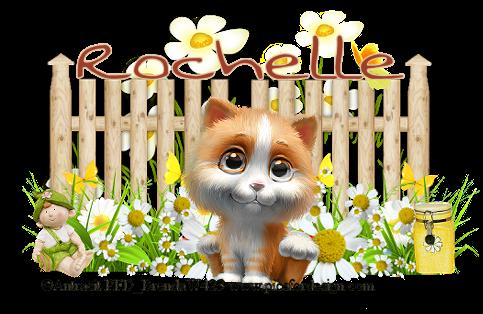 rochelle 1 (1)