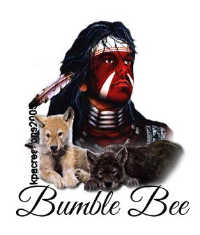 BUMBLE BEE NATIVE AMERICAN janhn6