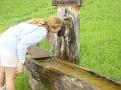 20050731 vakantie oostenrijk 021