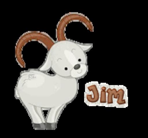 Jim - BighornSheep
