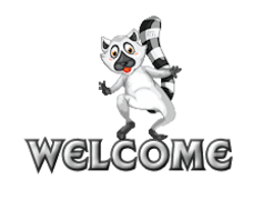 Welcome - RaccoonStepOnName