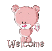 Welcome - ShyTeddy