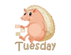 DOTW Tuesday - CutePorcupine