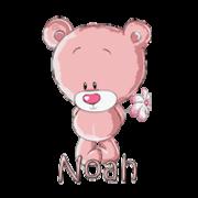 Noah - ShyTeddy