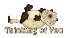 Thinking of You - KittySitUps