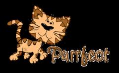Purrfect - CuteCatWalking