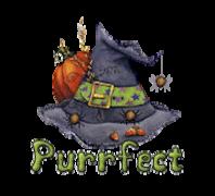 Purrfect - CuteWitchesHat