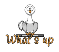 What's up - OstrichWithBlinkie