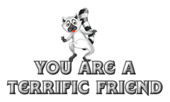 You are a Terrific Friend - RaccoonStepOnName