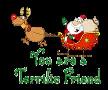 You are a Terrific Friend - SantaSleigh