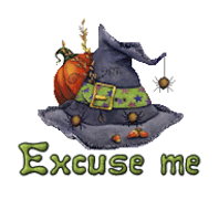 Excuse me - CuteWitchesHat