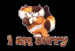 I am sorry - GigglingKitten