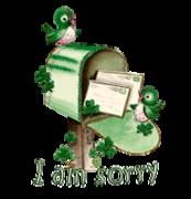 I am sorry - StPatrickMailbox16