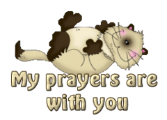 My prayers are with you - KittySitUps