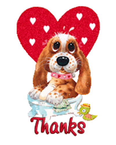 Thanks - ValentinePup2016