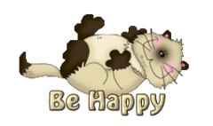 Be Happy - KittySitUps