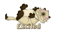 Excited - KittySitUps