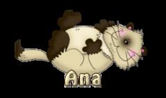 Ana - KittySitUps