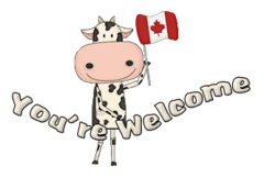 You're Welcome - CanadaDayCow