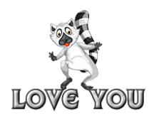Love You - RaccoonStepOnName