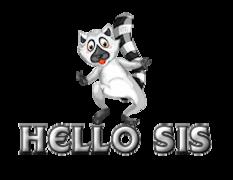 Hello Sis - RaccoonStepOnName