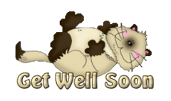 Get Well Soon - KittySitUps