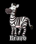 Bravo - DancingZebra