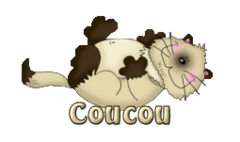 Coucou - KittySitUps
