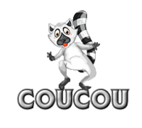 Coucou - RaccoonStepOnName