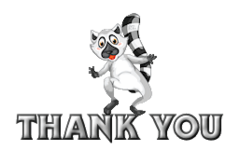Thank You - RaccoonStepOnName