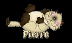 Pierre - KittySitUps