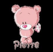 Pierre - ShyTeddy