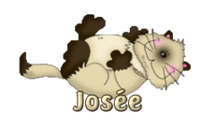 Josee - KittySitUps