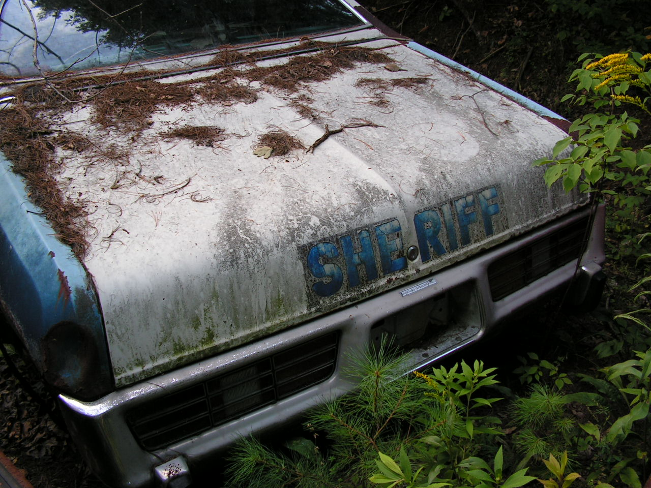 NY - Rensselaer County 1978 Dodge 03
