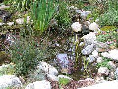 Descano Gardens01