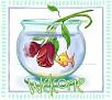 FISHBOWLDAWELCOME-vi