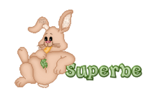 Superbe - BunnyWithCarrot