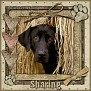 dcd-Sharing-In The Hay