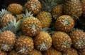 Ananas (Pine Apples)
