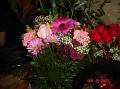 birthday flowers 004